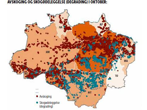 Avskoging i Amazonas i Oktober 2020.